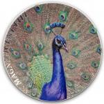 2015-CIT-Magnificent-Life-Peacock-REV