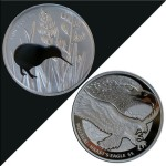 Kiwi-Silhouette-&-Eagle