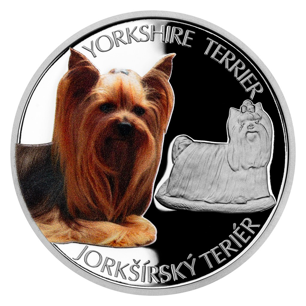 DOG BREEDS - YORKSHIRE TERRIER 2021 Niue 1oz proof silver coin